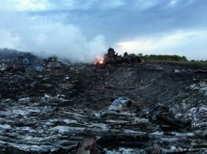 mh17-crash-site_2