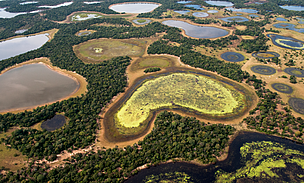 pantanal_area_umida_66941_1_69091