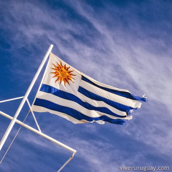 viver-uruguai
